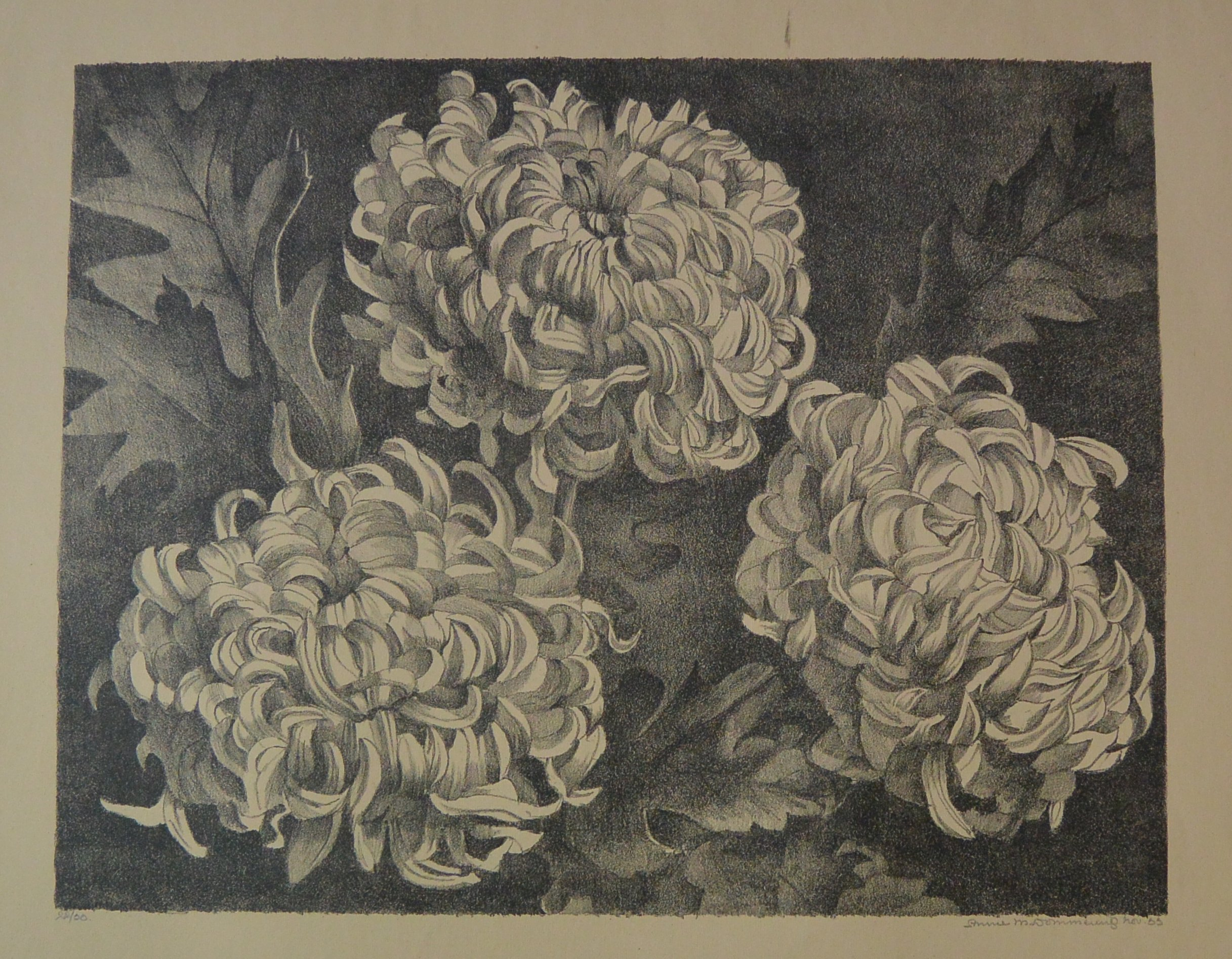 Bloemen-002 Annie van Dommering, Drie grote pioenrozen