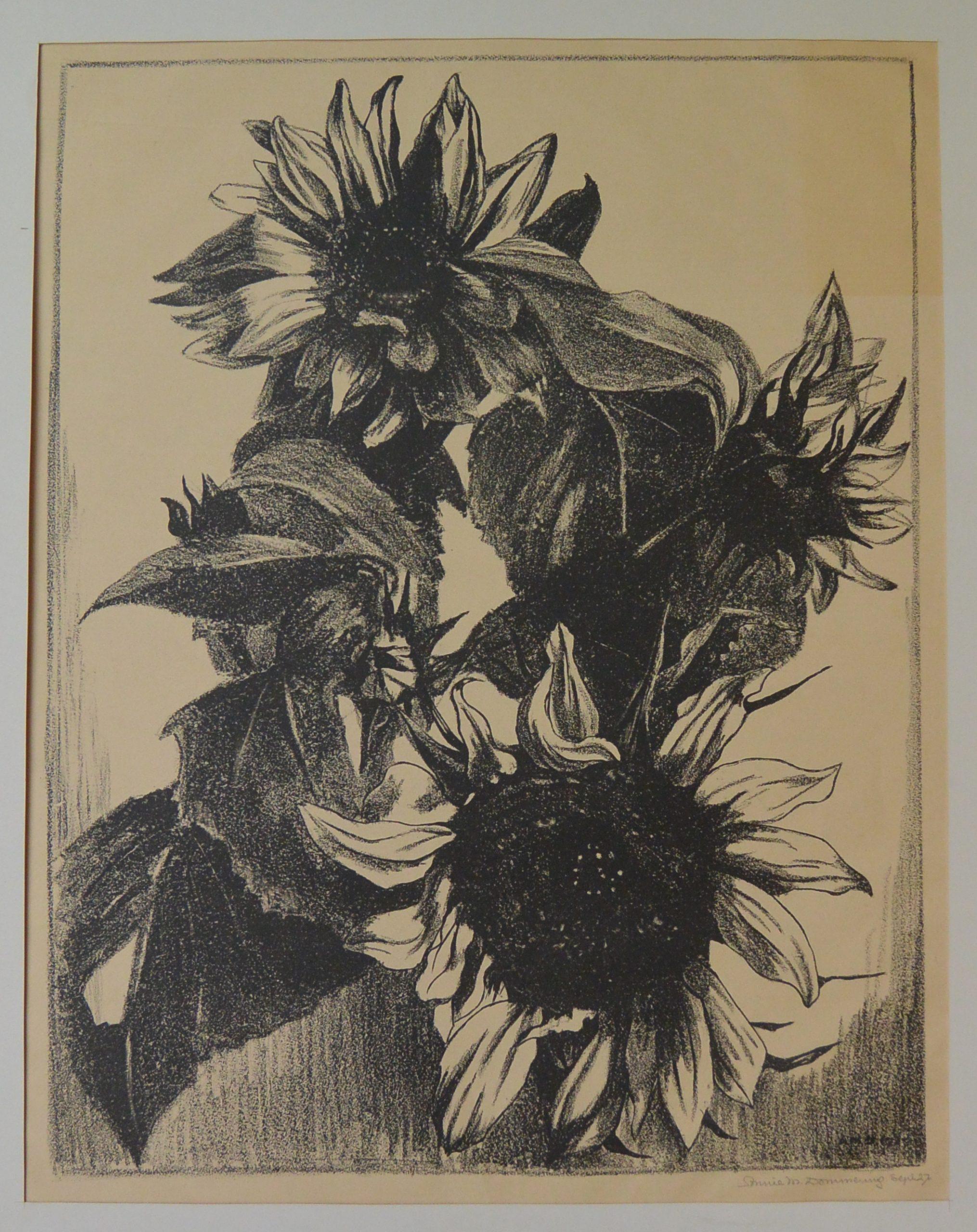 Bloemen-003 Annie van Dommering, Zonnebloemen